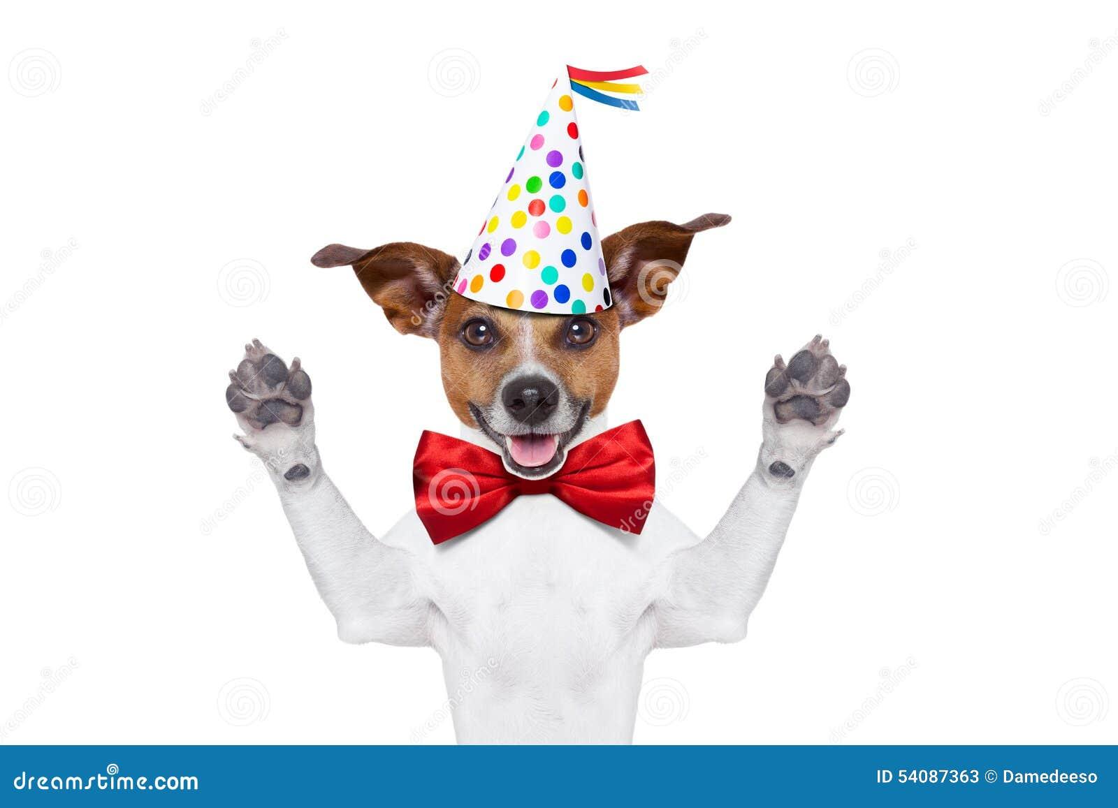 Jack Russell Birthday Cake