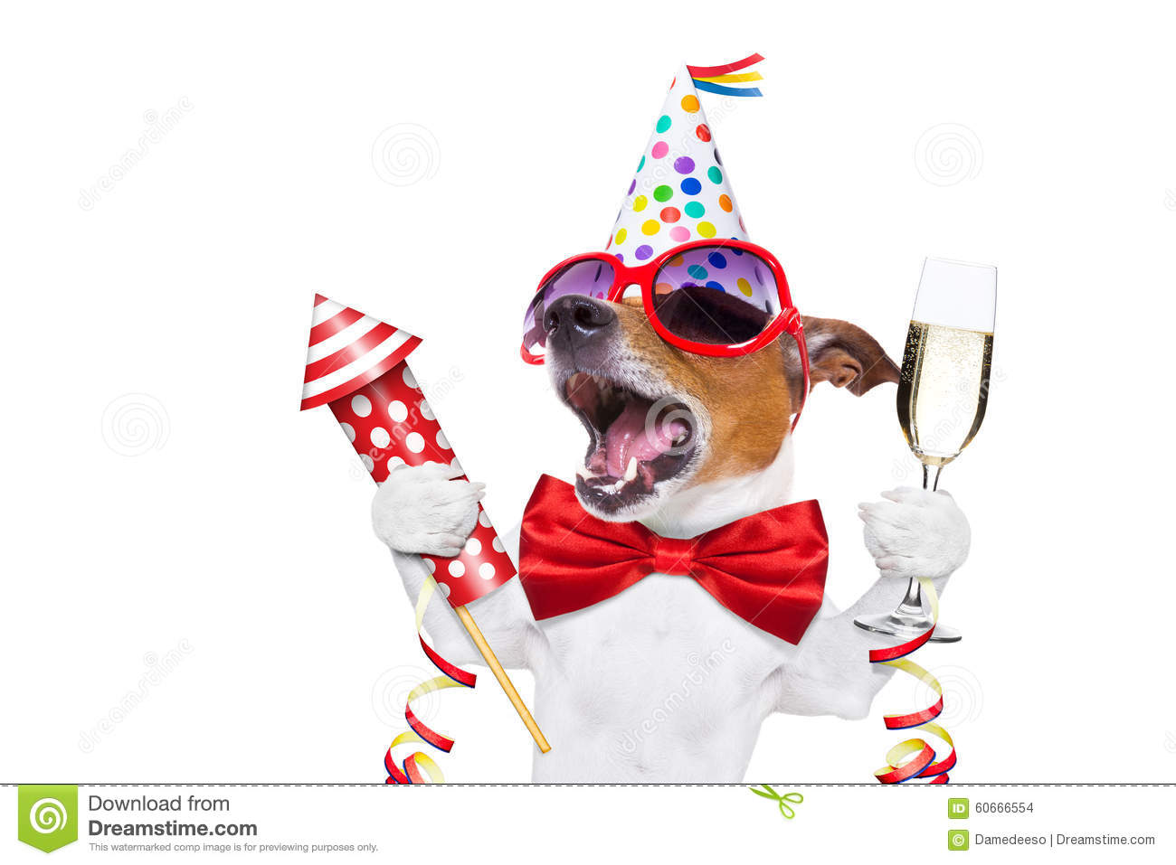 Birthday Ecards Dogs Singing ~ Happy birthday dog stock photo image