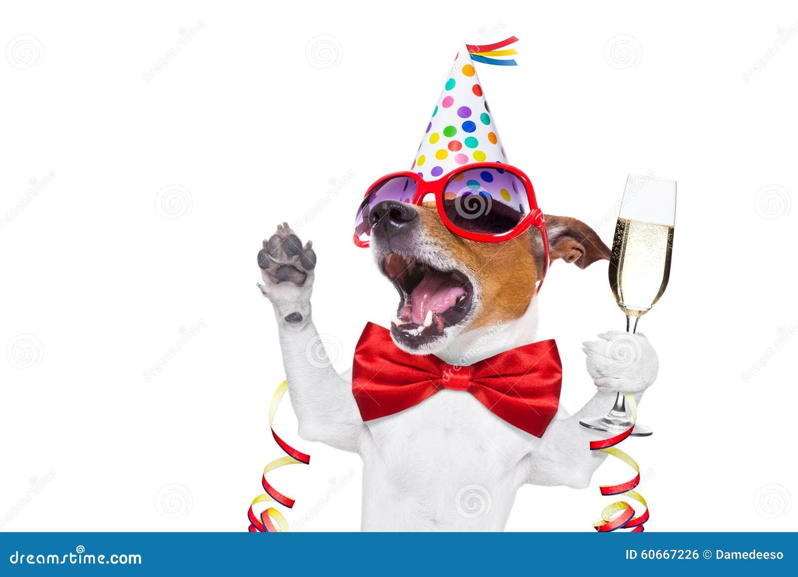 Celebrating New Year Eve