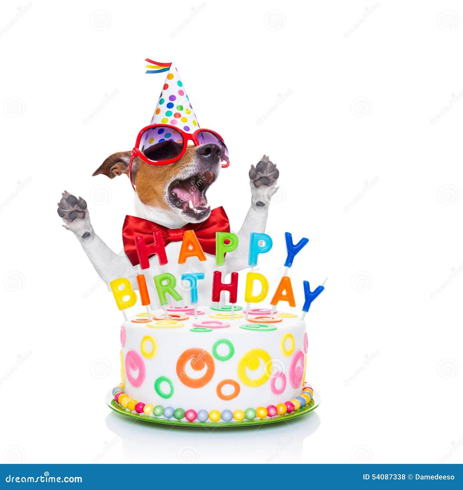 Happy birthday dog singing stock photo. Image of cake - 54087338