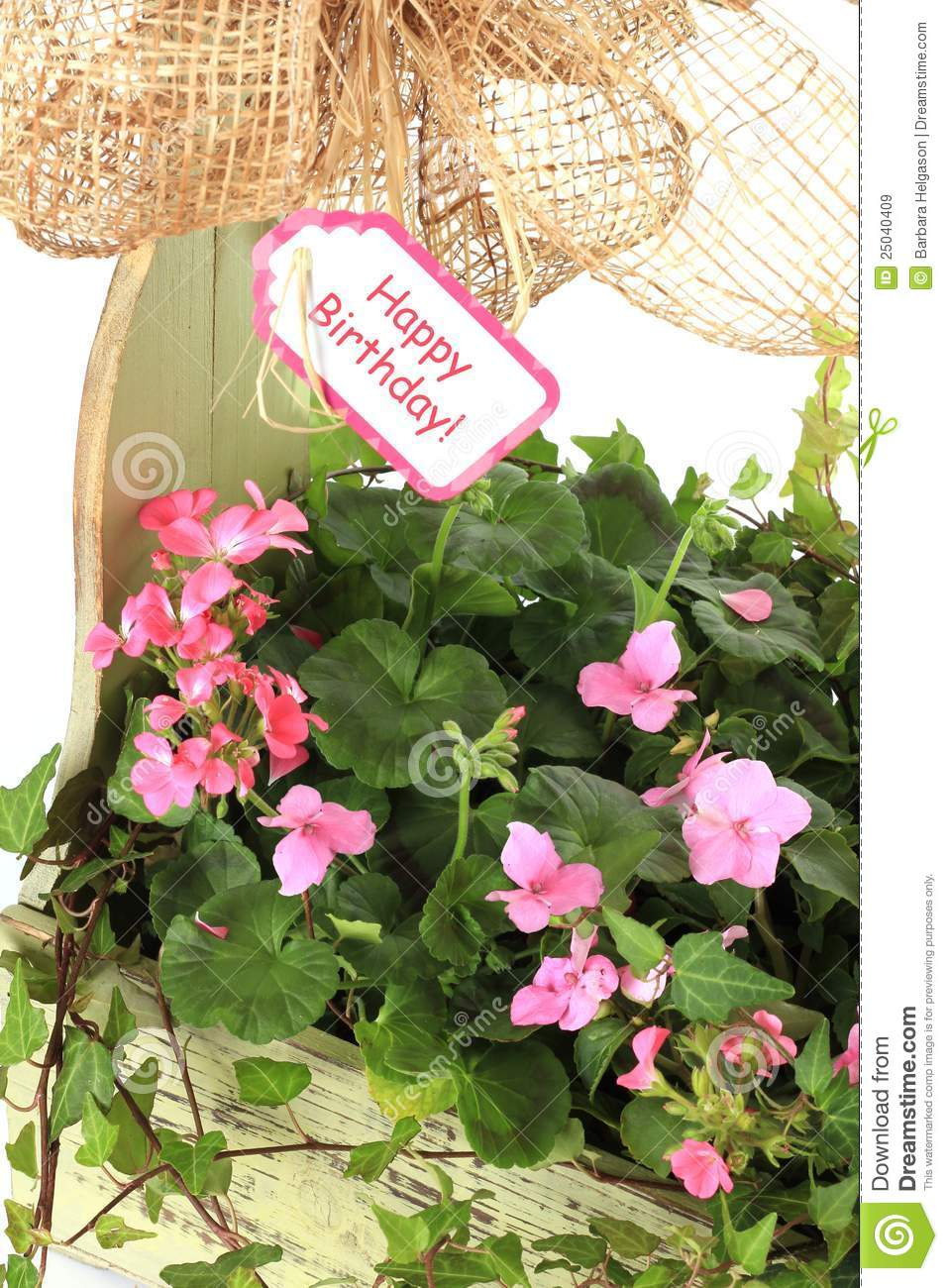 Happy birthday flowers stock image image of white birthday 25040409 happy birthday flowers izmirmasajfo Image collections
