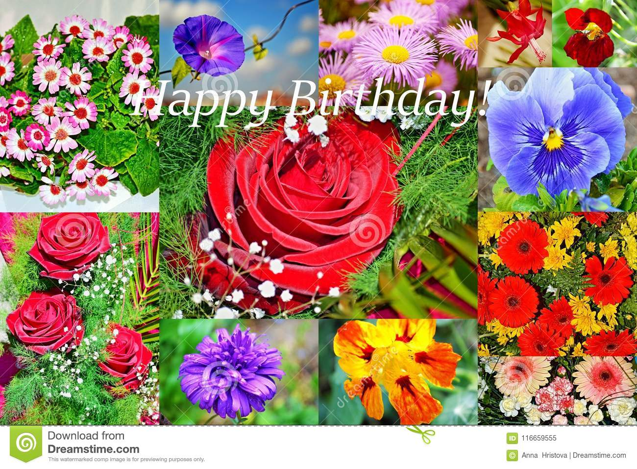 Happy Birthday Flowers Collage Postcard Stock Image Image Of