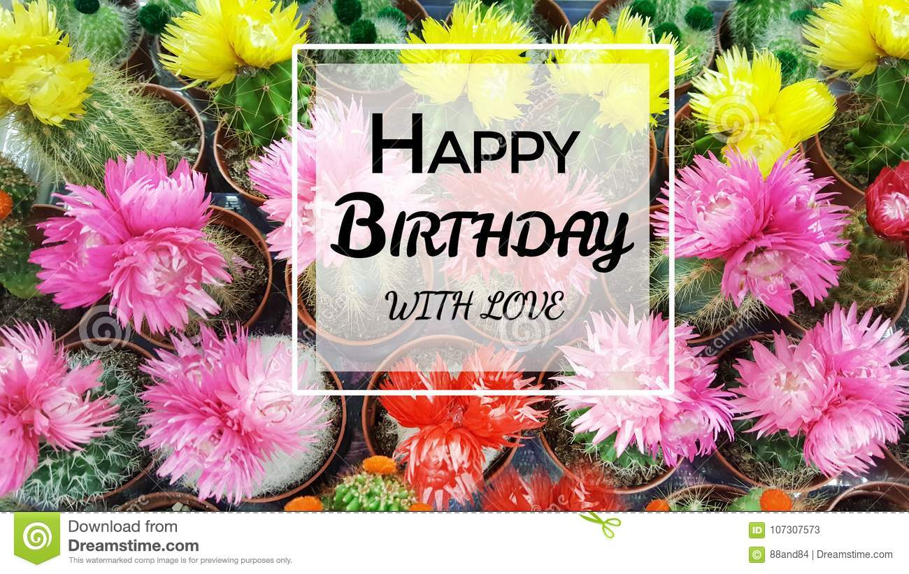 Happy Birthday Greeting Card With Cacti Flowers Background Stock