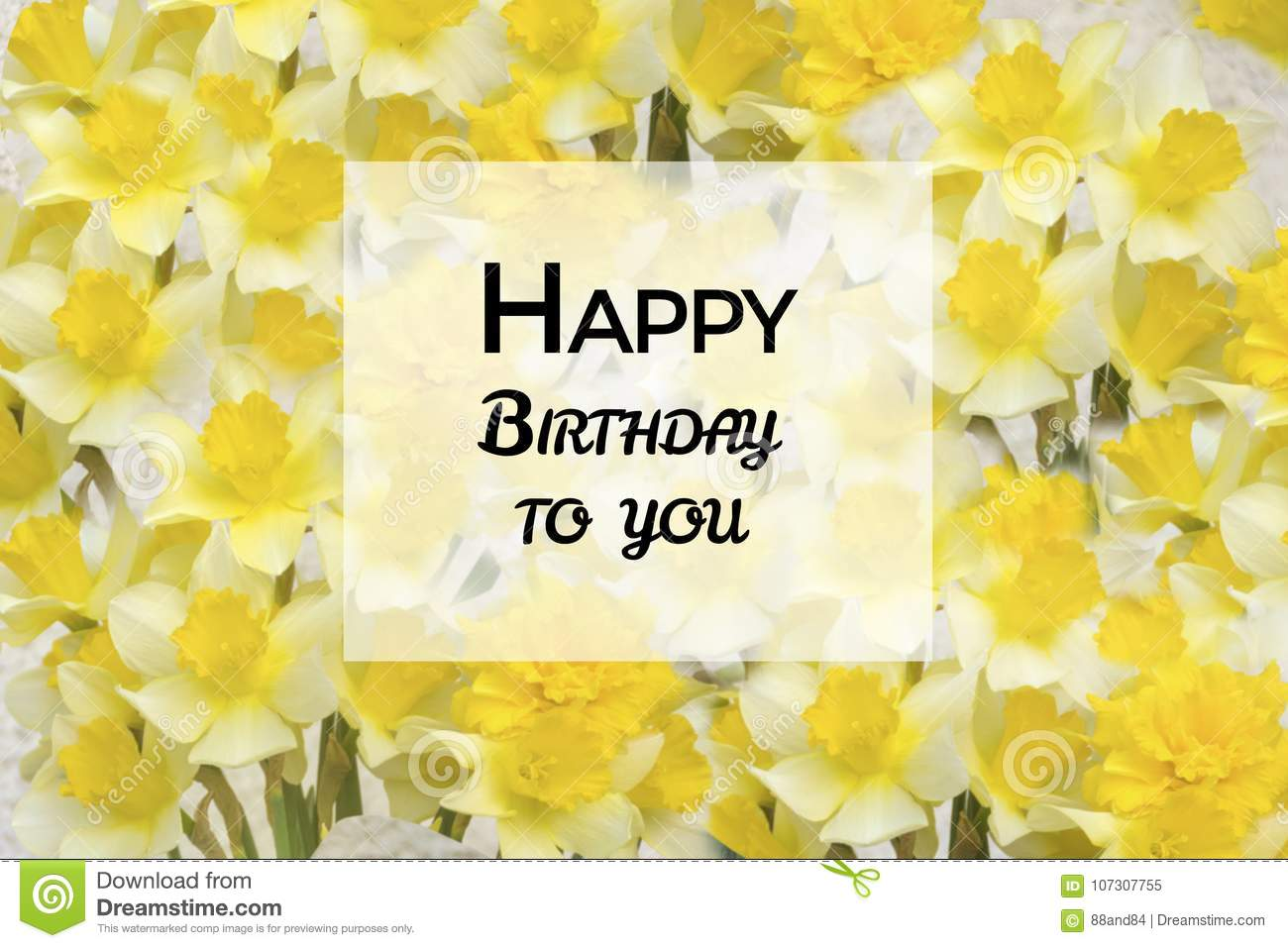 Happy Birthday Greeting Card With Narcissus Flowers Background Stock