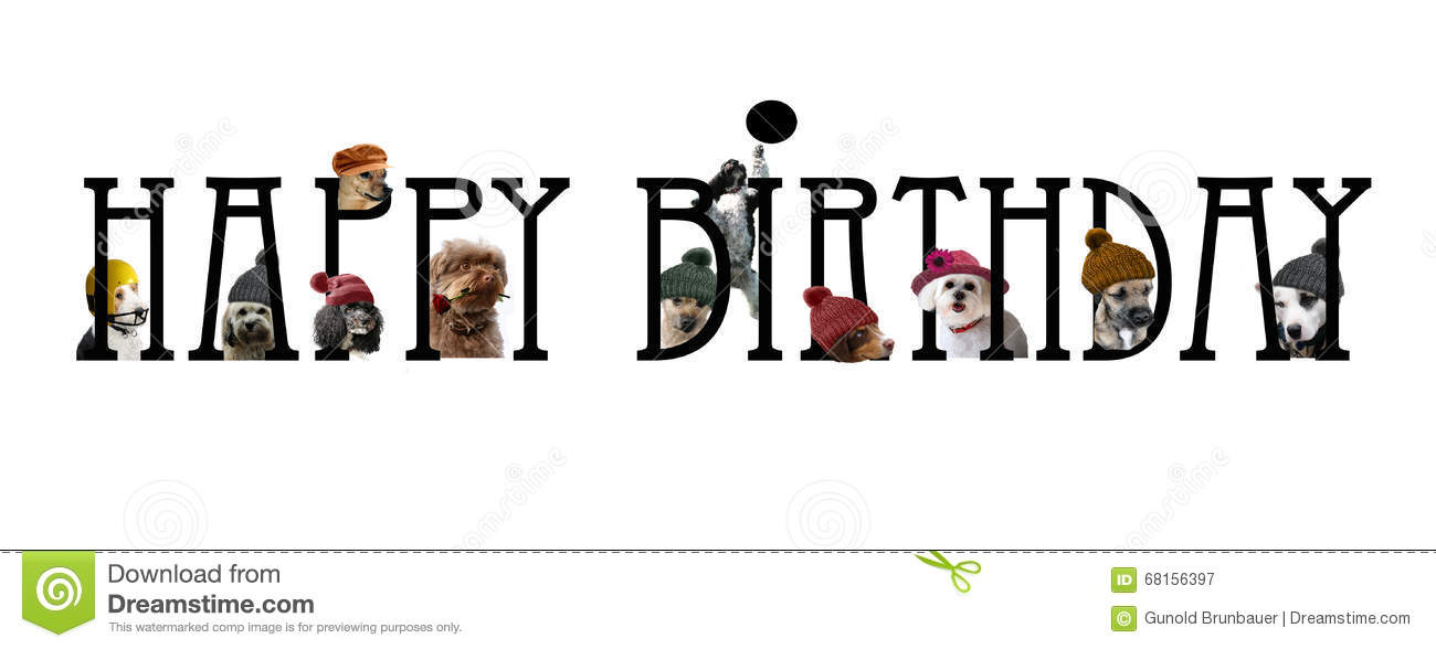 happy birthday lettering with dogs stock illustration