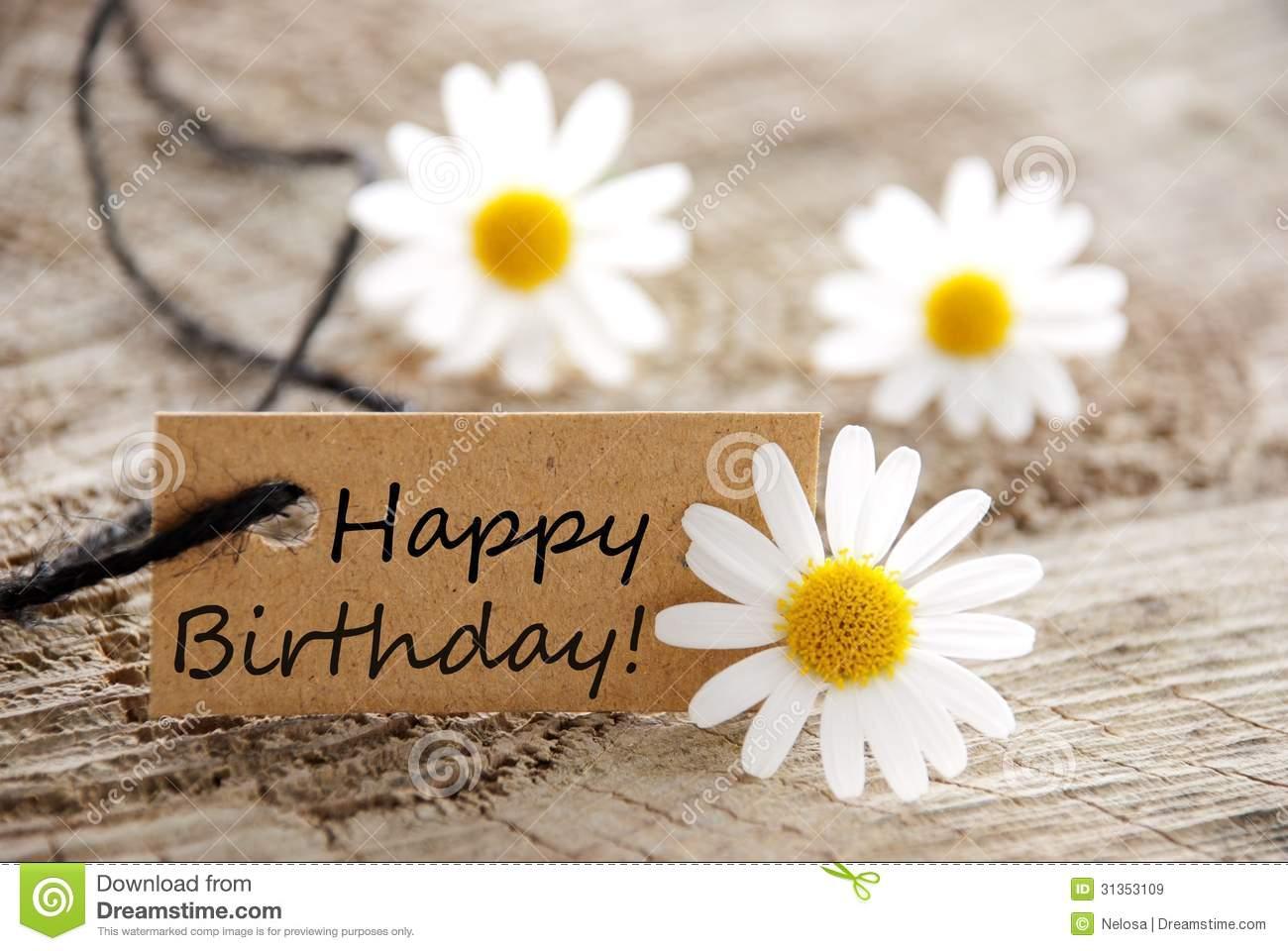 natural looking banner with happy birthday and white blossoms as ...