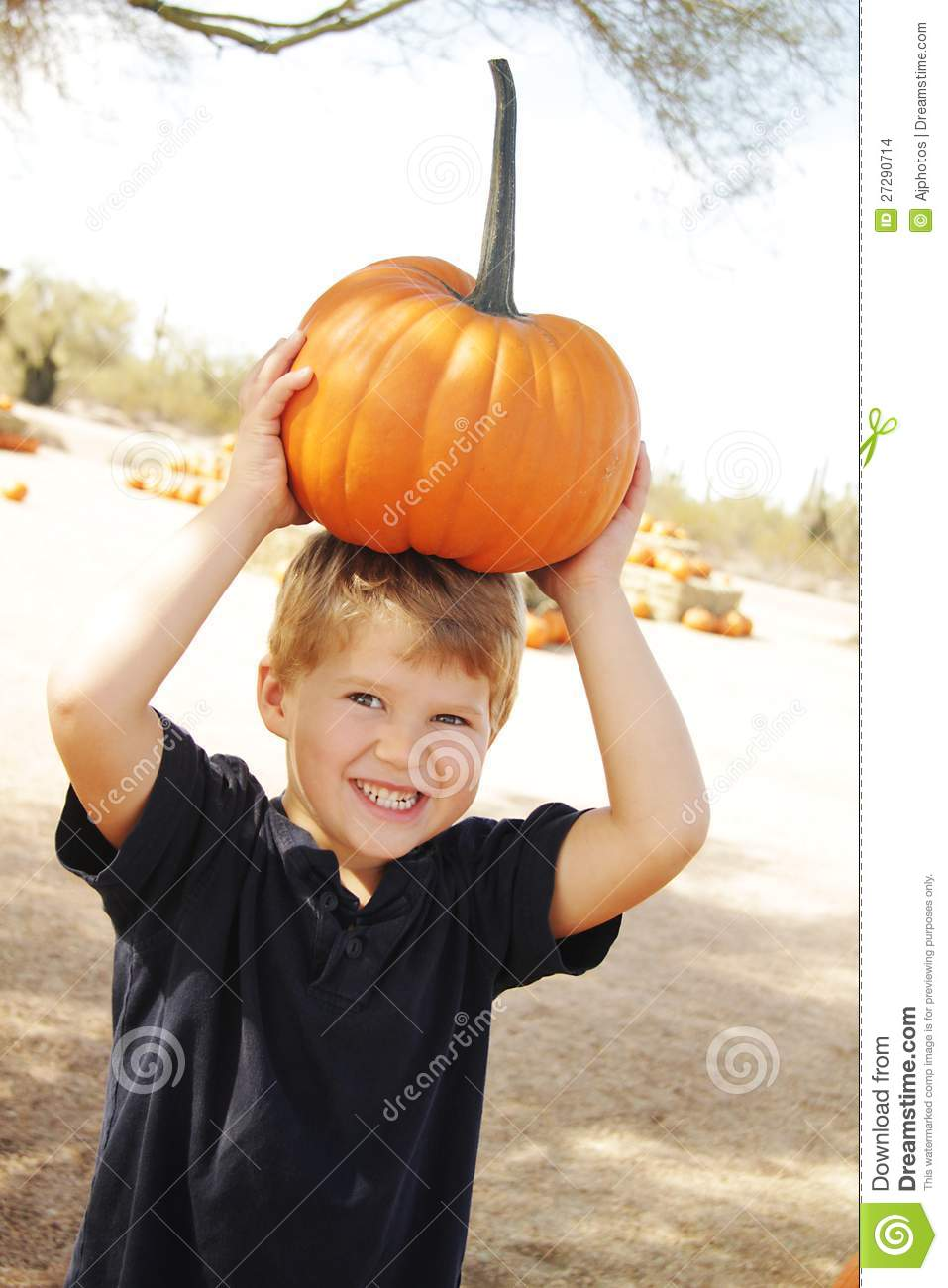 Happy boy at pumpkin patch