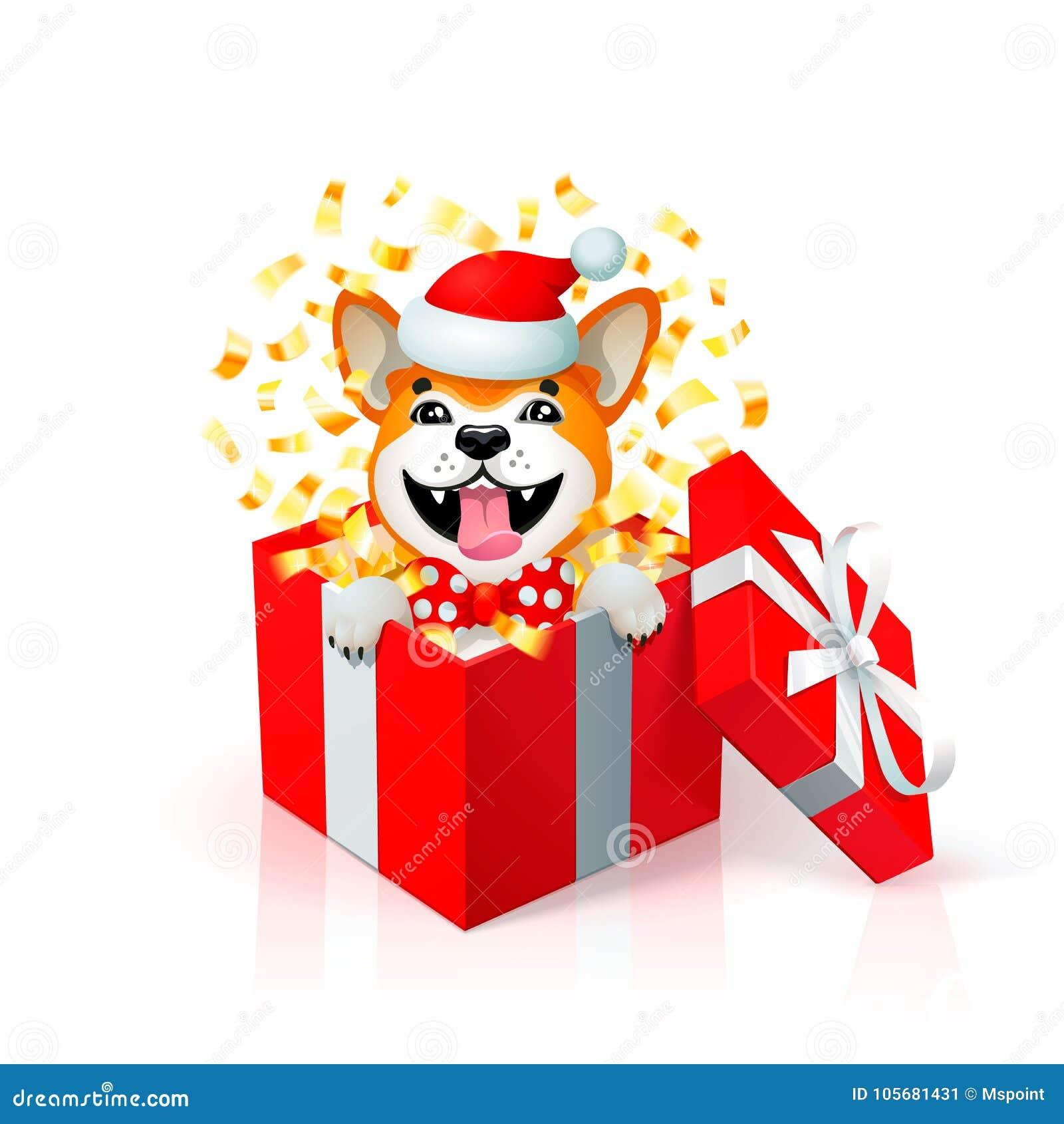 happy cartoon puppy in gift box wearing santas hat portrait of akita inu japanese dog