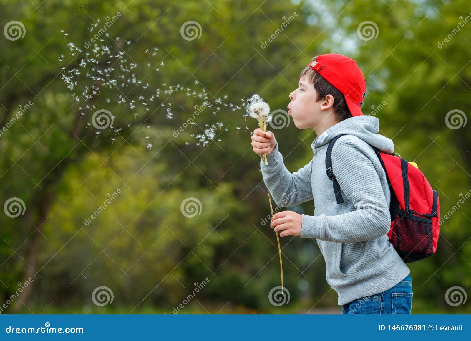 Happy child blowing dandelion flower outdoors. Boy having fun in spring park. Blurred green background