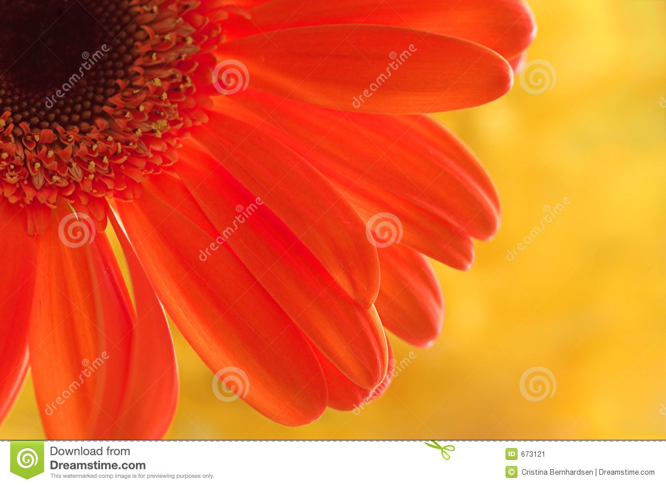 Happy Colors Beauteous Happy Colors Stock Image  Image 673121 Inspiration