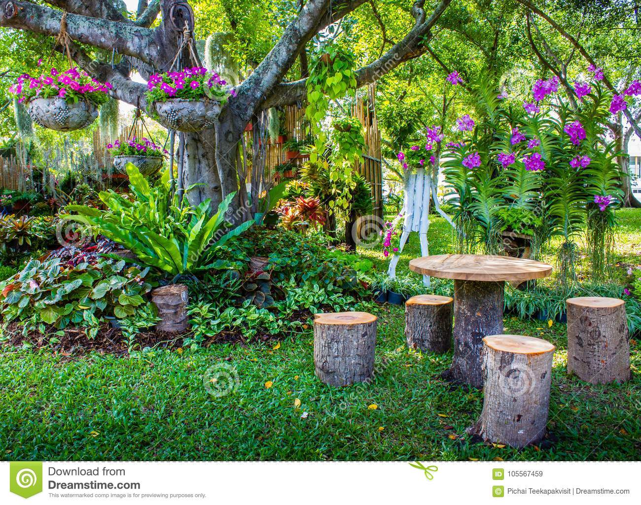 Happy Corner At The Garden Of Flowers And Trees. Stock Image