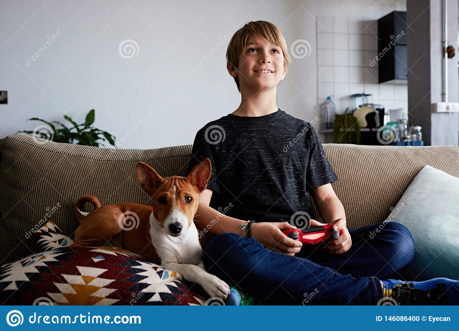 Happy Cute Boy Playing Video Game Console Seated On A Sofa With Basenji Dog Puppy Close In Living Room At Home Stock Photo Image Of Playful Concentration 146086400