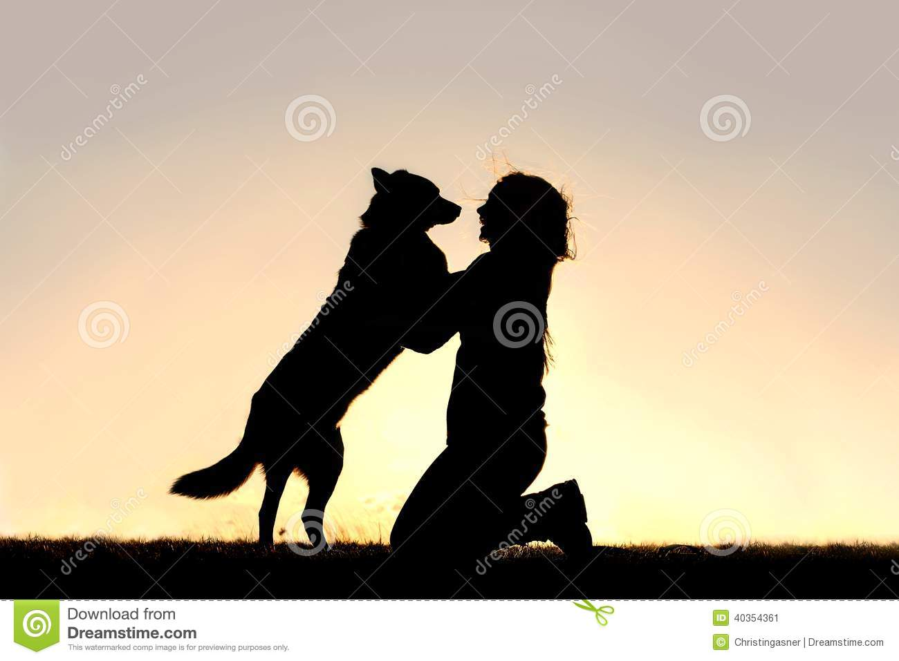 Happy Dog Jumping Up To Greet Woman Silhouette Stock Image Image