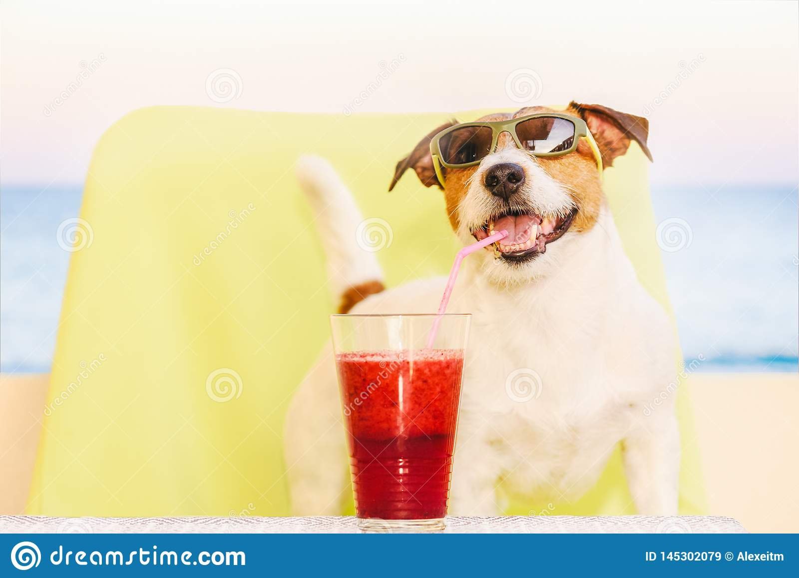 Happy dog wearing sunglasses drinking fruit smoothie through cocktail straw