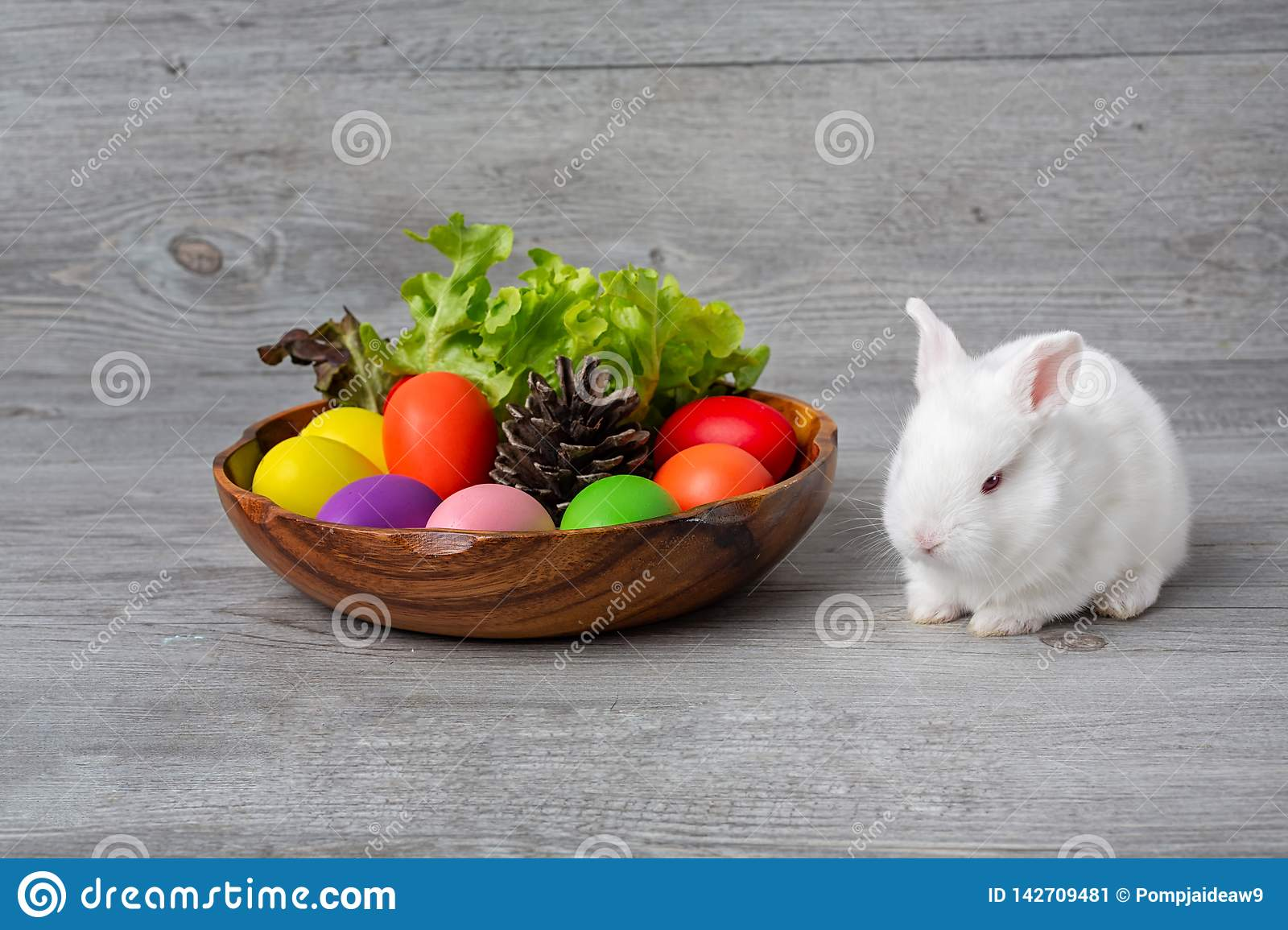 Happy Easter Day. Bunny With A Basket Eggs And Pine Cones. Rabbit ...