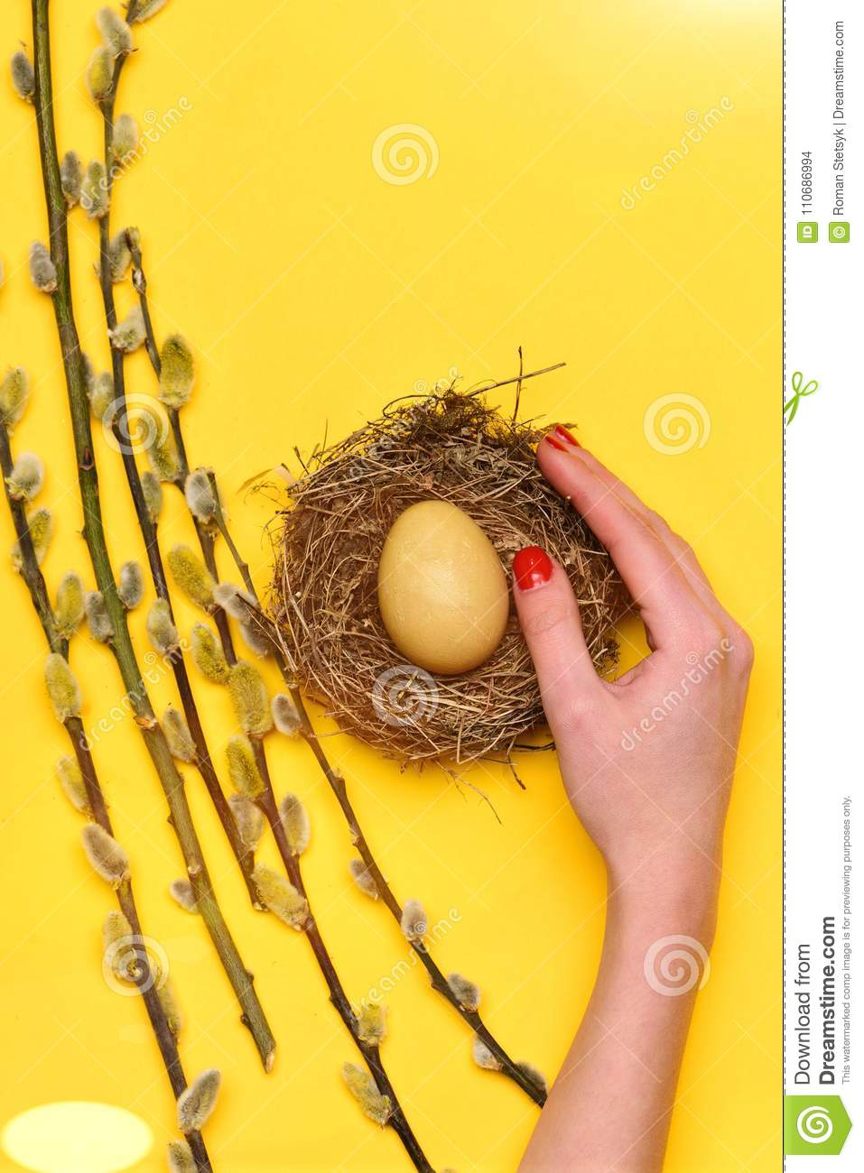 Yellow painted easter egg in nest with willow in hand