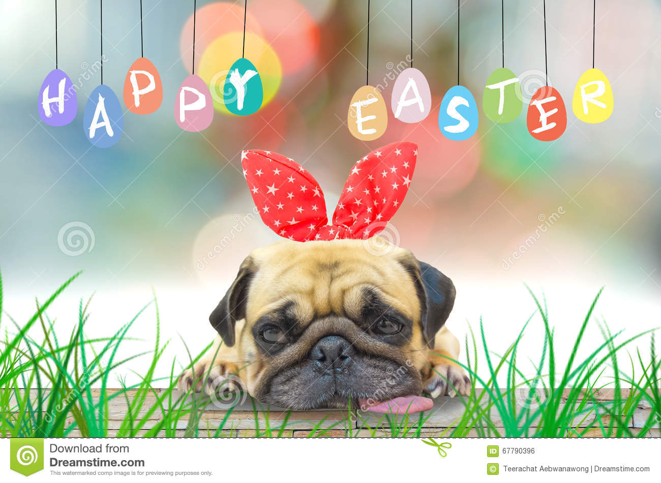Happy Easter. Pug wearing Easter rabbit Bunny ears sitting with pastel colorful of eggs.