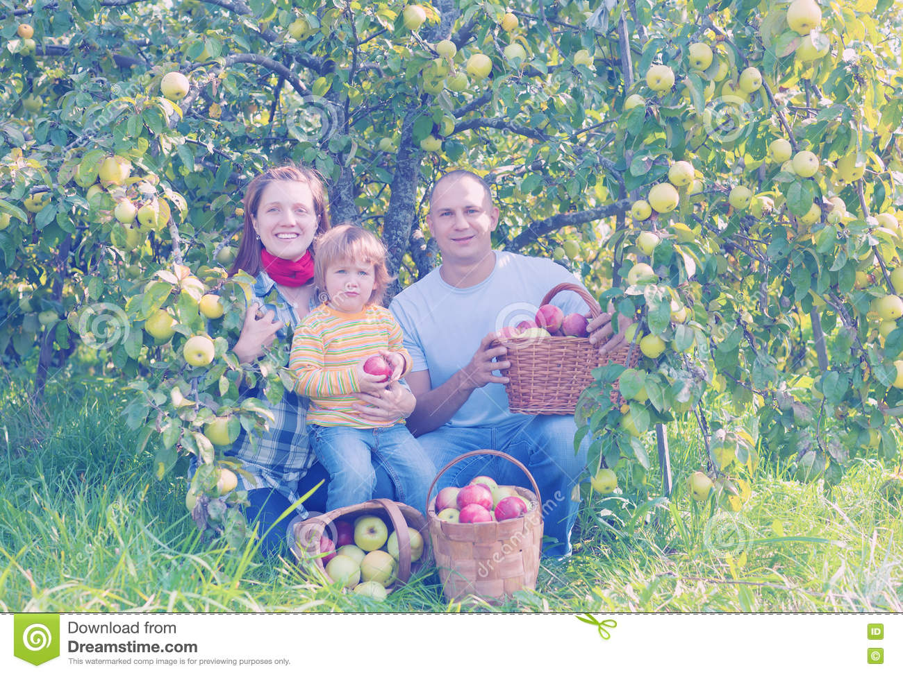 Family At The Orchard Royaltyfree Stock Image. Cisco Partner Certification Call Center Kpi. Downtown Houston Office Space. Data Destruction Software Movers Kirkland Wa. Car Shipping Carriers Reviews. Oklahoma Beer Alcohol Content. Performance Management Examples. Ultrasound Tech School In California. Google Adwords White Paper Glc Sx Mm Sfp