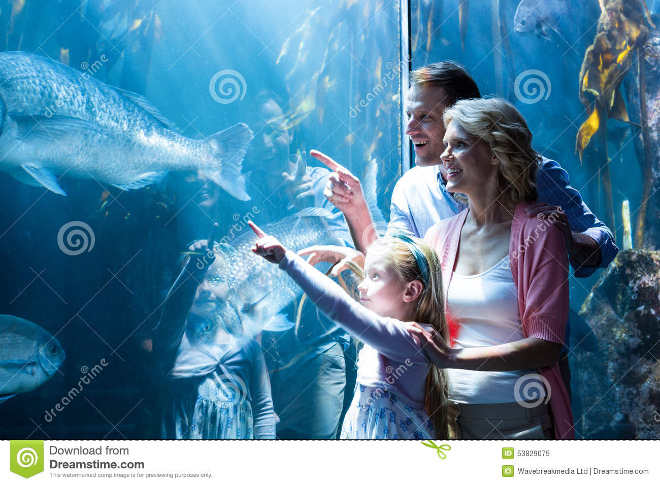 Happy Family Pointing A Fish In The Tank Stock Photo