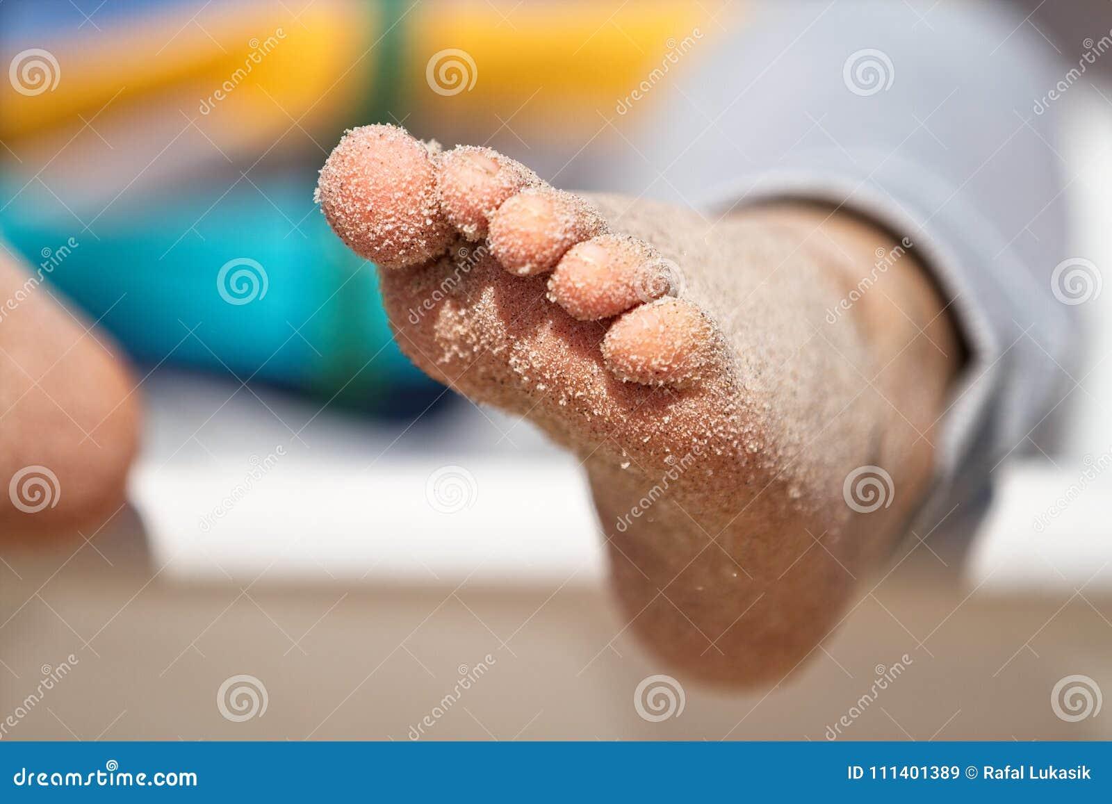 happy feet download