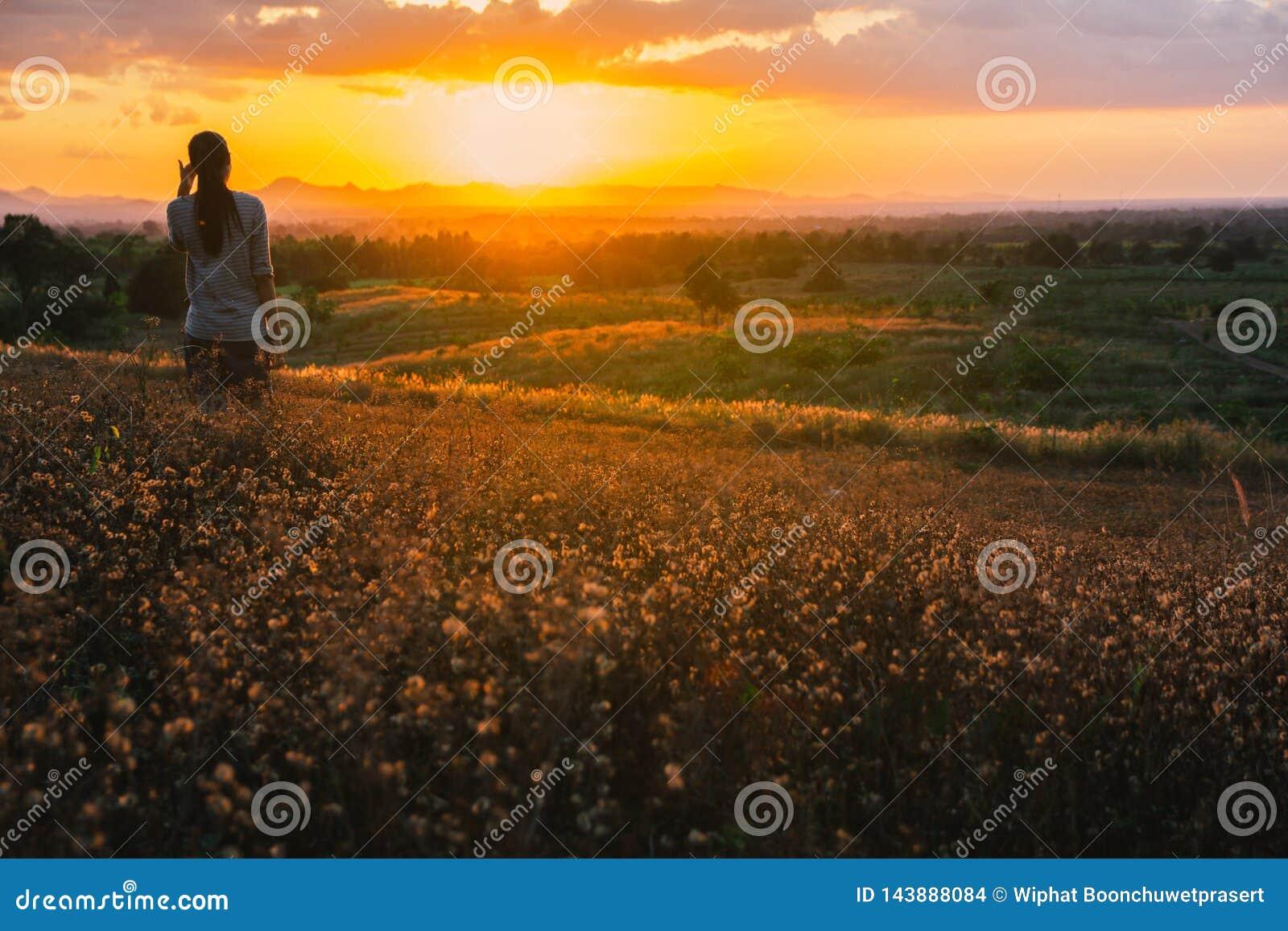 Happy Free Woman Enjoying Happiness Freedom And Nature Stock Photo Image Of Flowers Beautiful 143888084