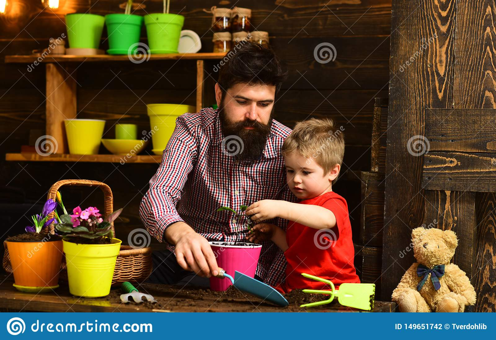 Happy gardeners with spring flowers. bearded man and little boy child love nature. Flower care watering. Soil