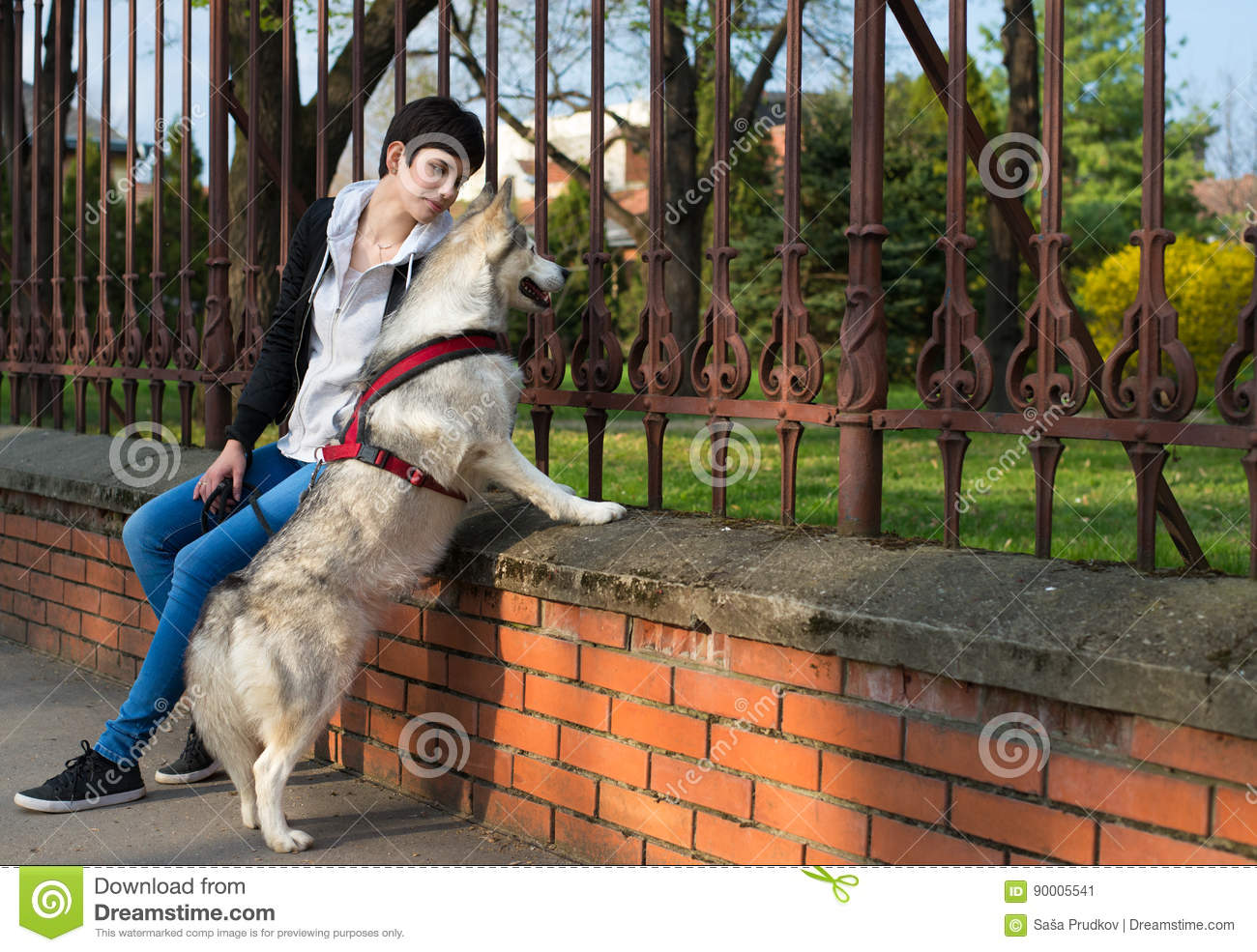 Happy girl sitting with her pet husky dog in the park in for Dog day sitting
