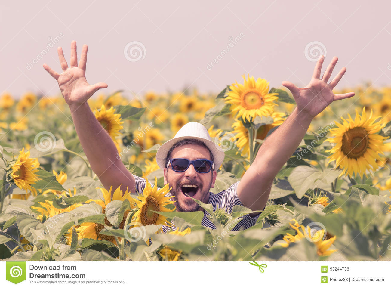 64a9fb1eb6612 Portrait of young happy man wearing hat and sunglasses with raised hands in  sunflowers field.