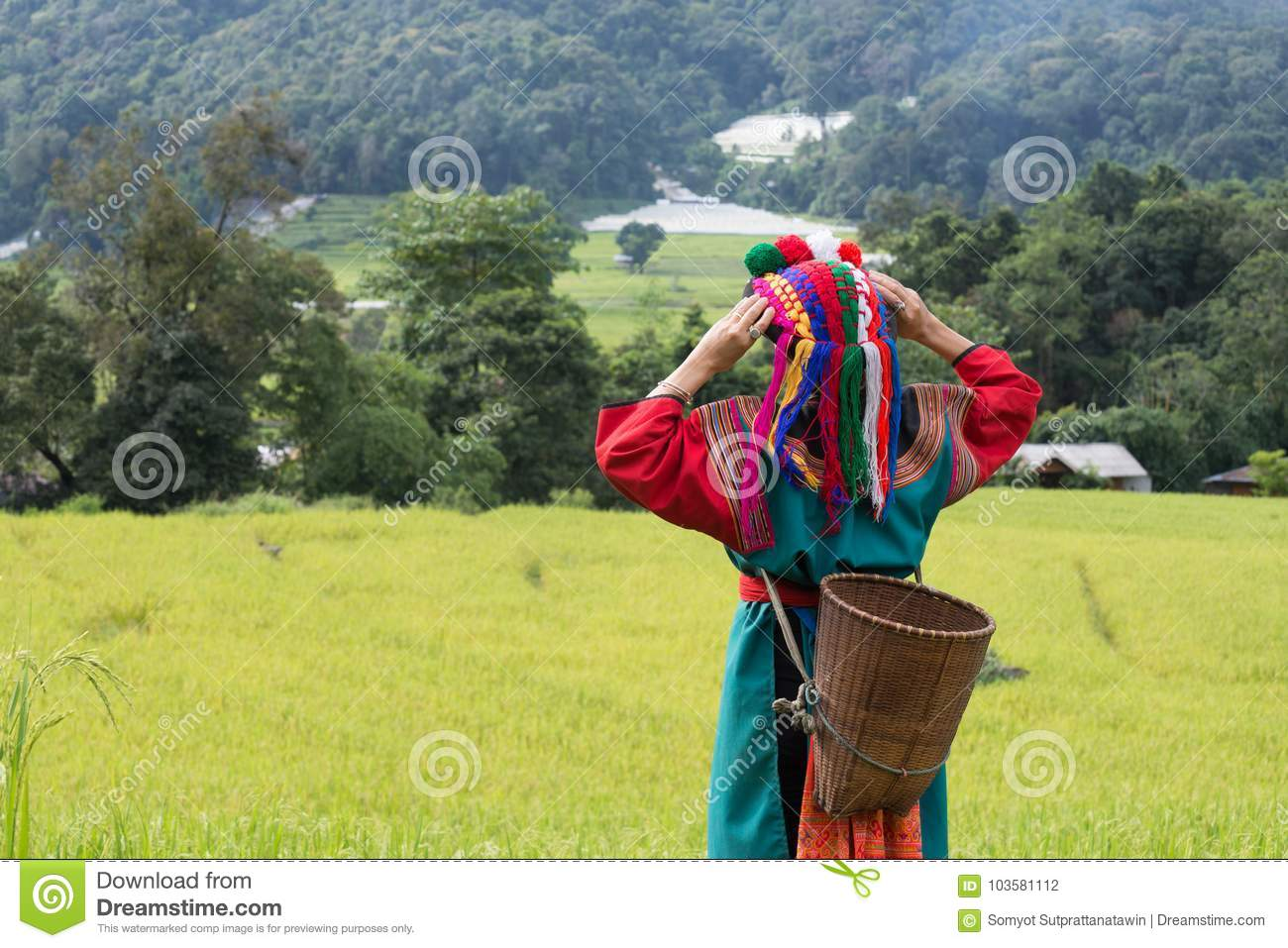 Happy hill tribe in paddy rice field colorful costume dress