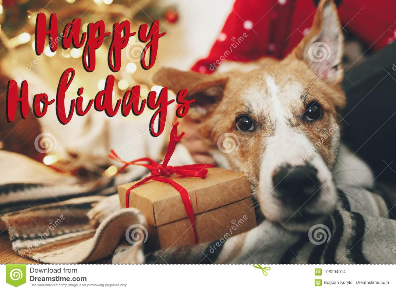 Happy holidays text, seasons greetings, cute puppy sitting at cr