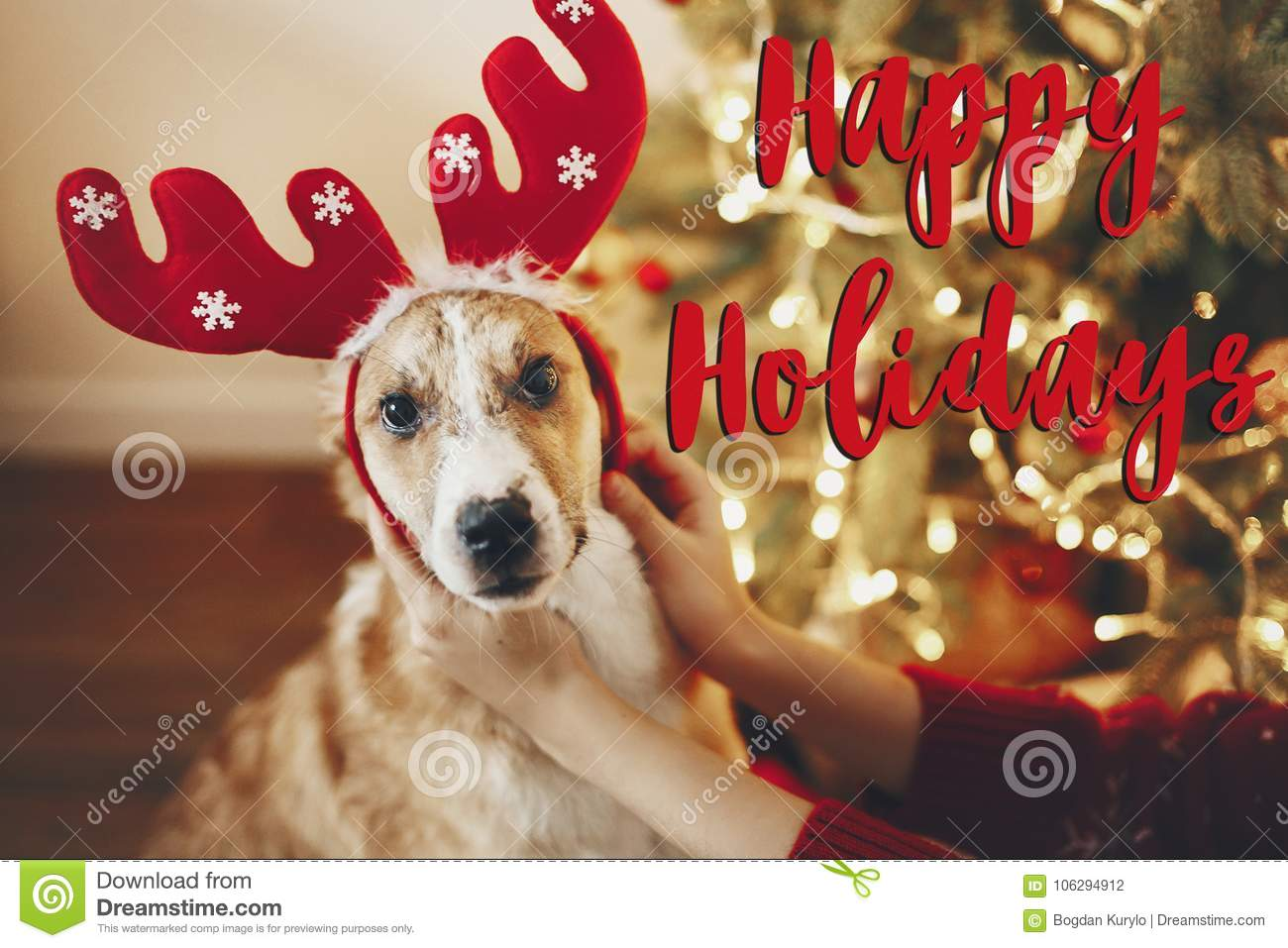 happy holidays text, seasons greetings, merry christmas and happy new year concept. cute dog in reindeer hat sitting at christmas