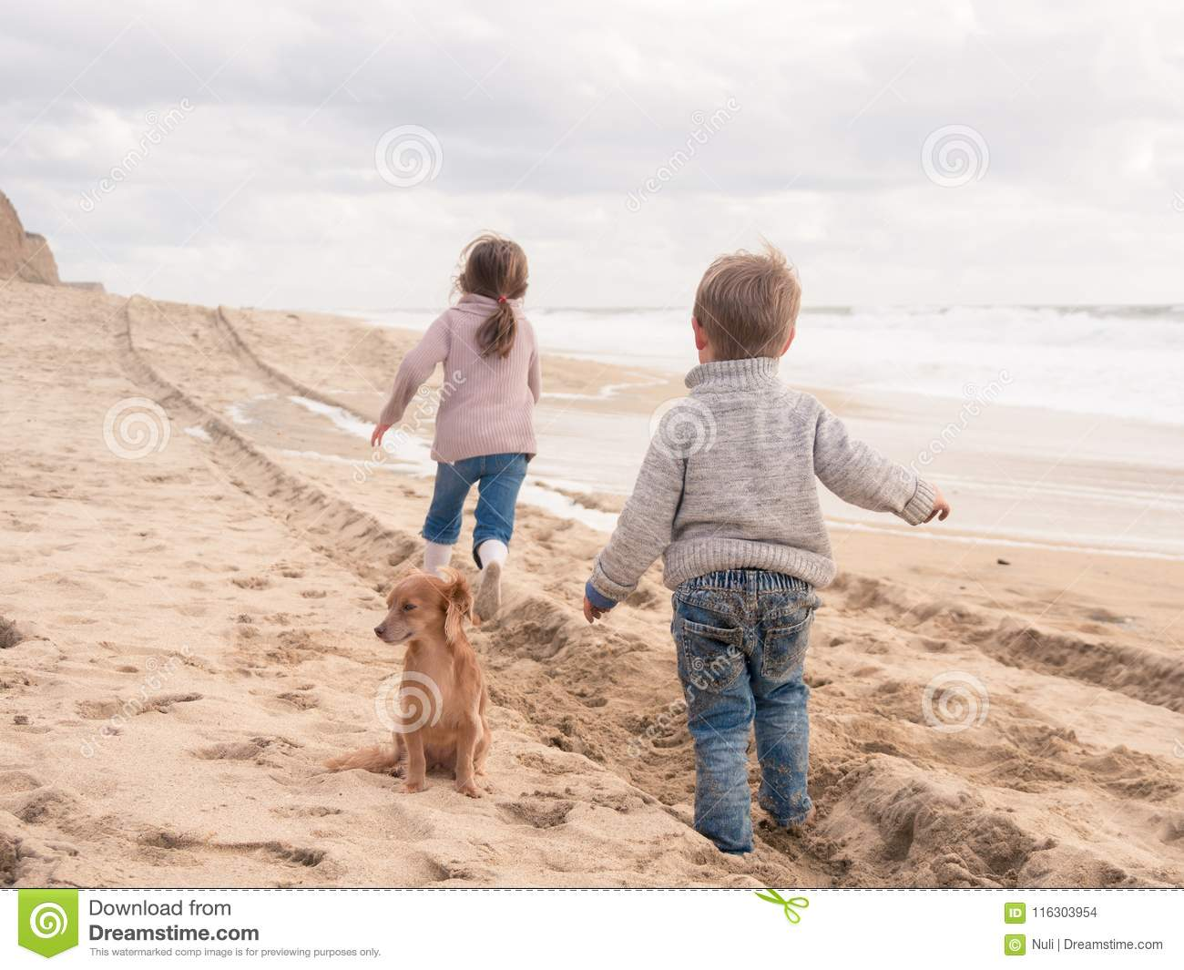 Happy Kids With Cute Dog Running On The Beach On Vacation Stock