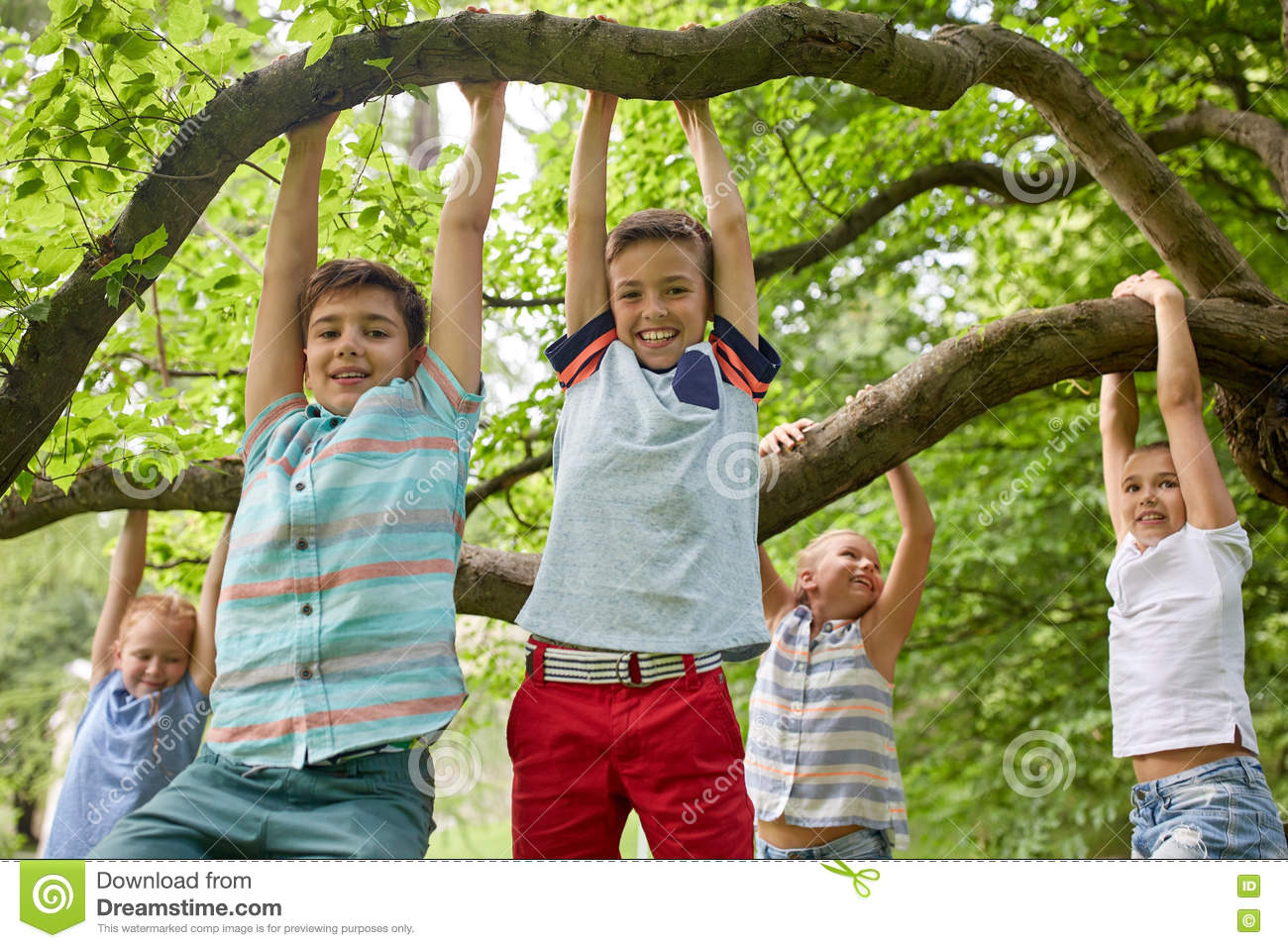 Happy kids hanging on tree in summer park stock photo for Hanging groups of pictures