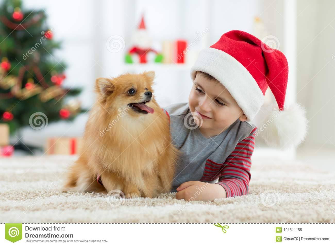 Happy kid little boy and dog as their gift at Christmas. Christmas interior