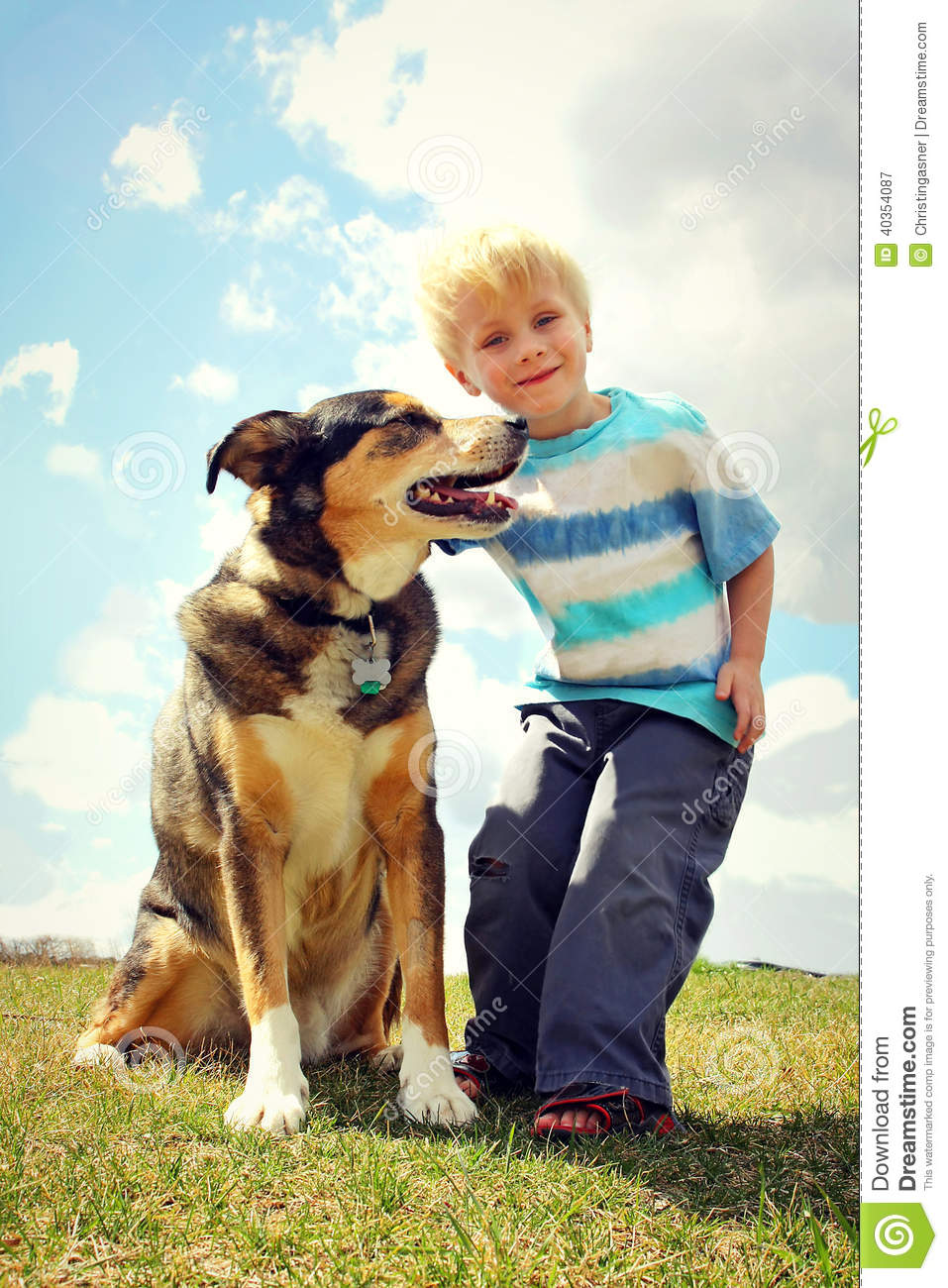 Adopt A Dog  Large Breed