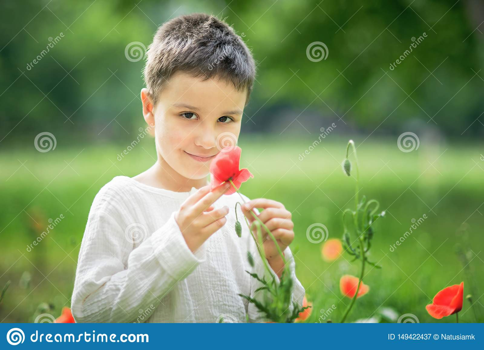 Happy little smiling boy standing and smiling in poppy field