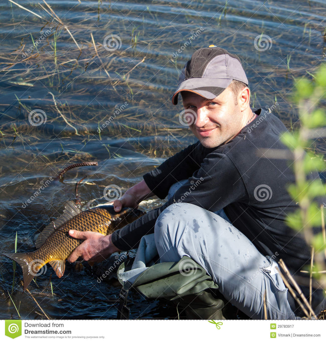 Big Carp Scales Stock Image