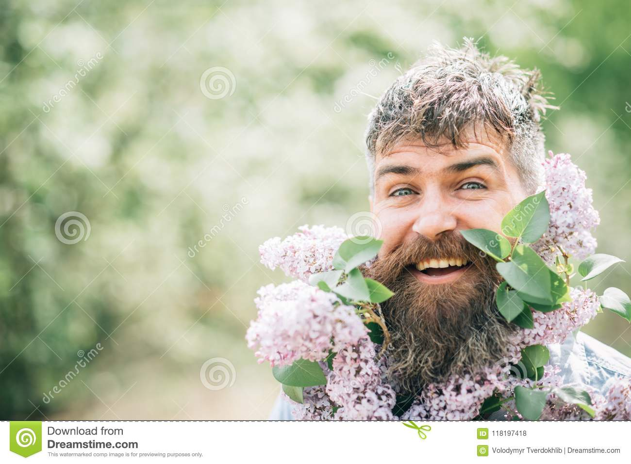 Happy man with lilac in beard. Bearded man smile with lilac flowers on sunny day. Hipster enjoy scent of spring blossom