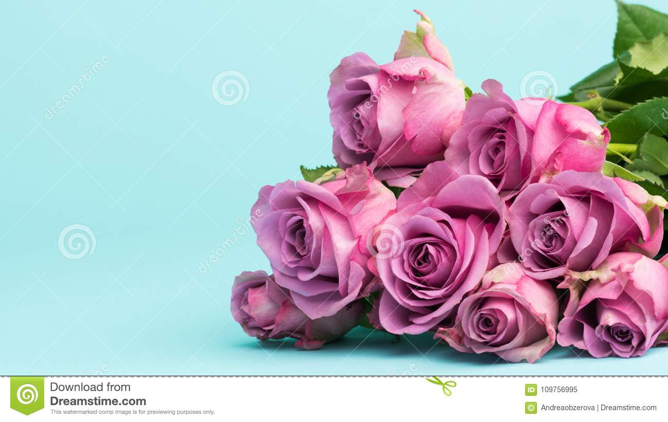 Happy Mother`s Day, Women`s Day, Valentine`s Day or Birthday Background. Greeting card with beautiful fresh pink roses.