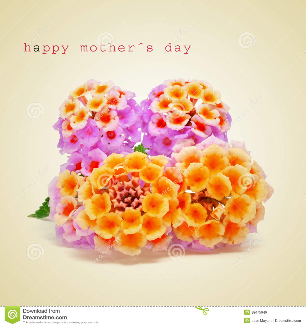 Happy mothers day stock image. Image of card, concept ...