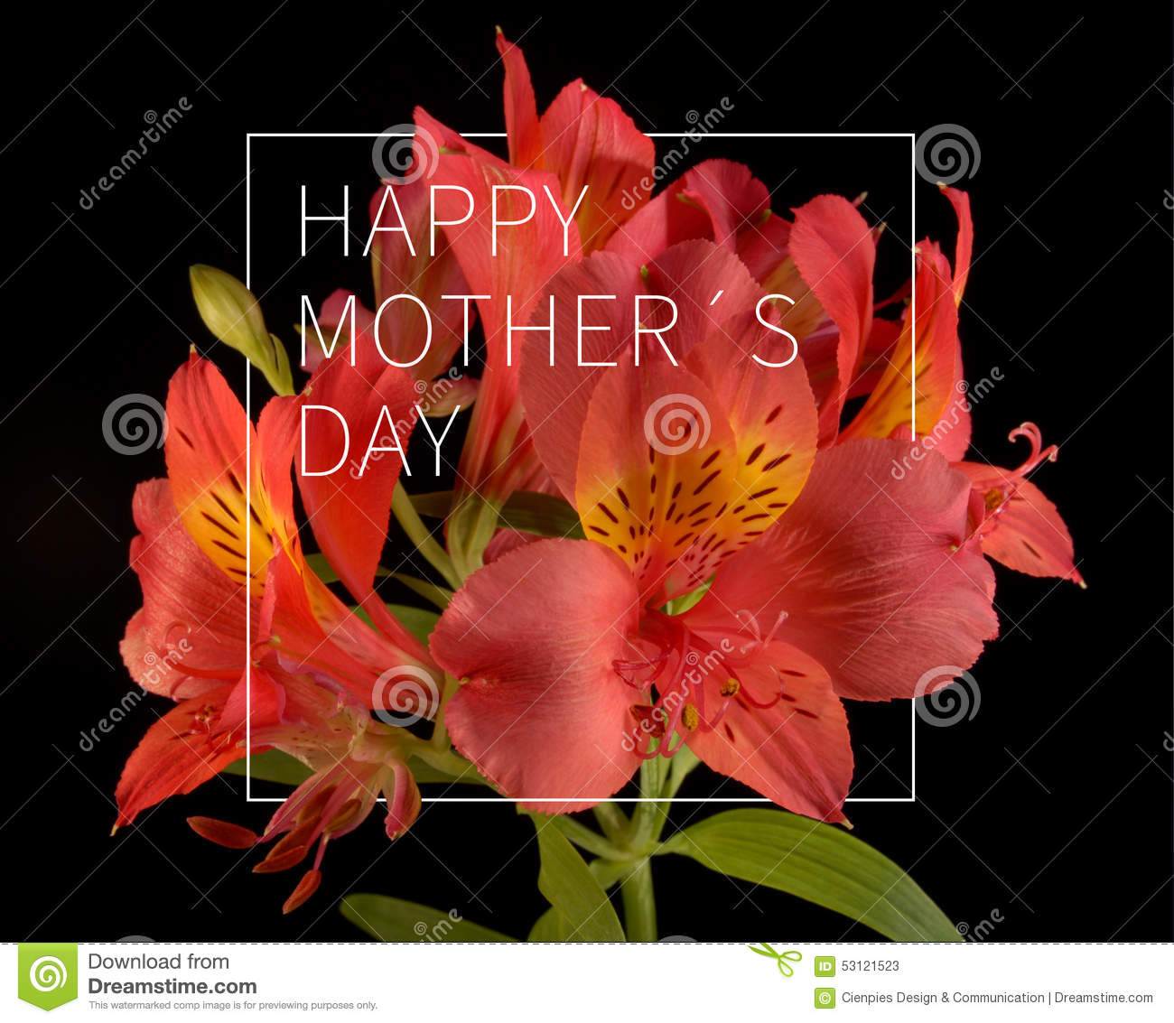 Happy mothers day flower background stock photo image for Classy mothers day cards