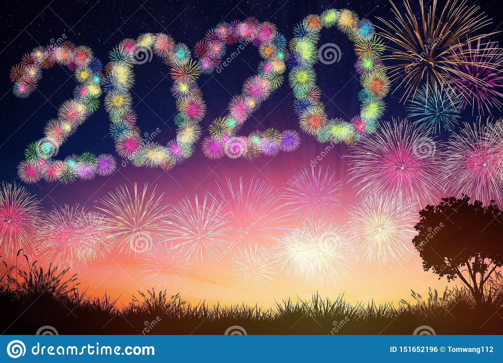 new year 2020 concepts with fireworks background