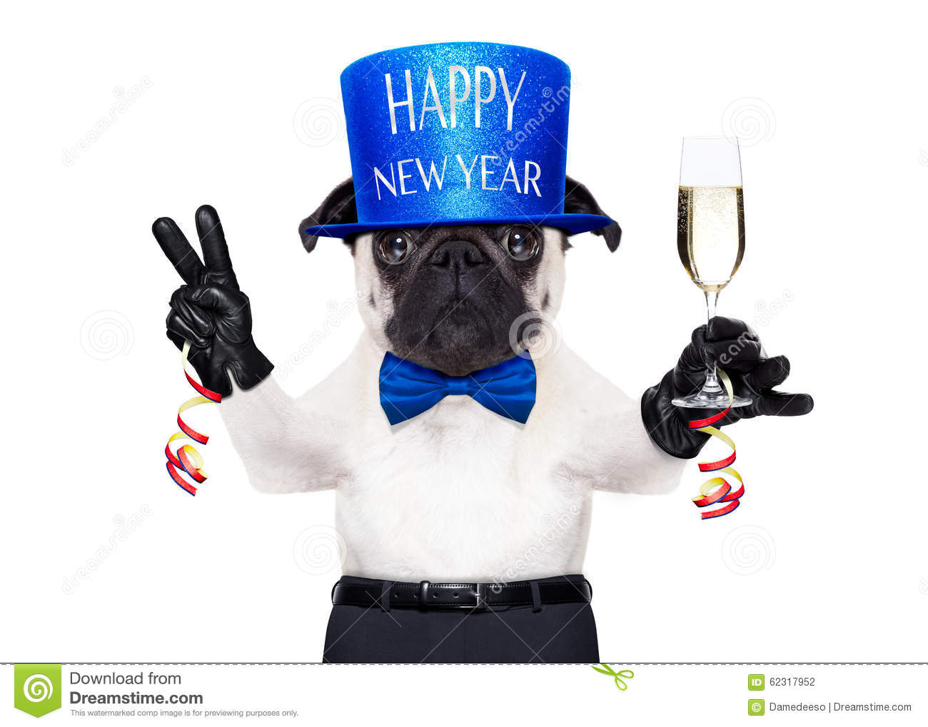 Happy new year dog stock photo. Image of funny, greeting - 62317952