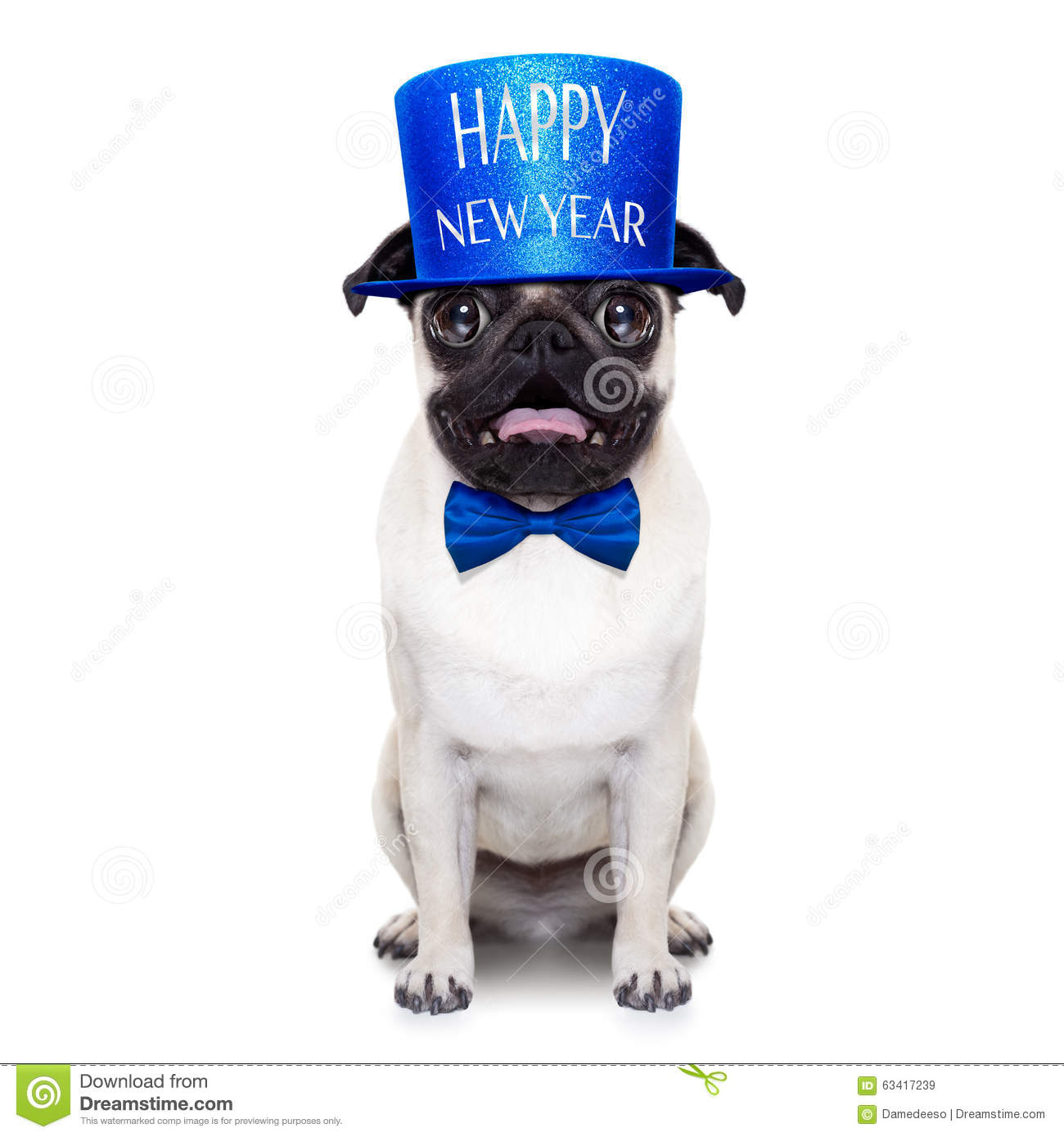 Happy new year dog stock image. Image of cocktail, funny ...