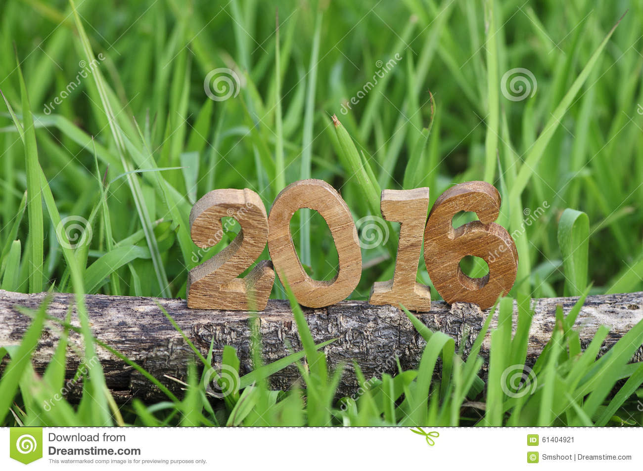 happy new year 2016 nature concept and wood number idea
