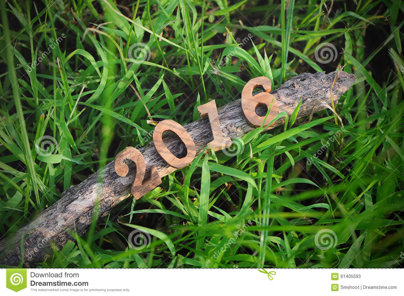happy new year 2016 on green grasses background
