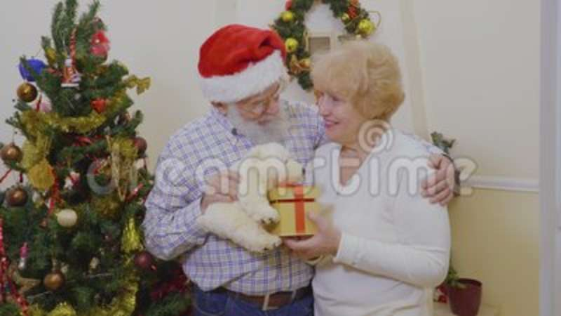 Happy Old Couple Play With Presents And White Teddy Bear Near Christmas Tree Stock Video
