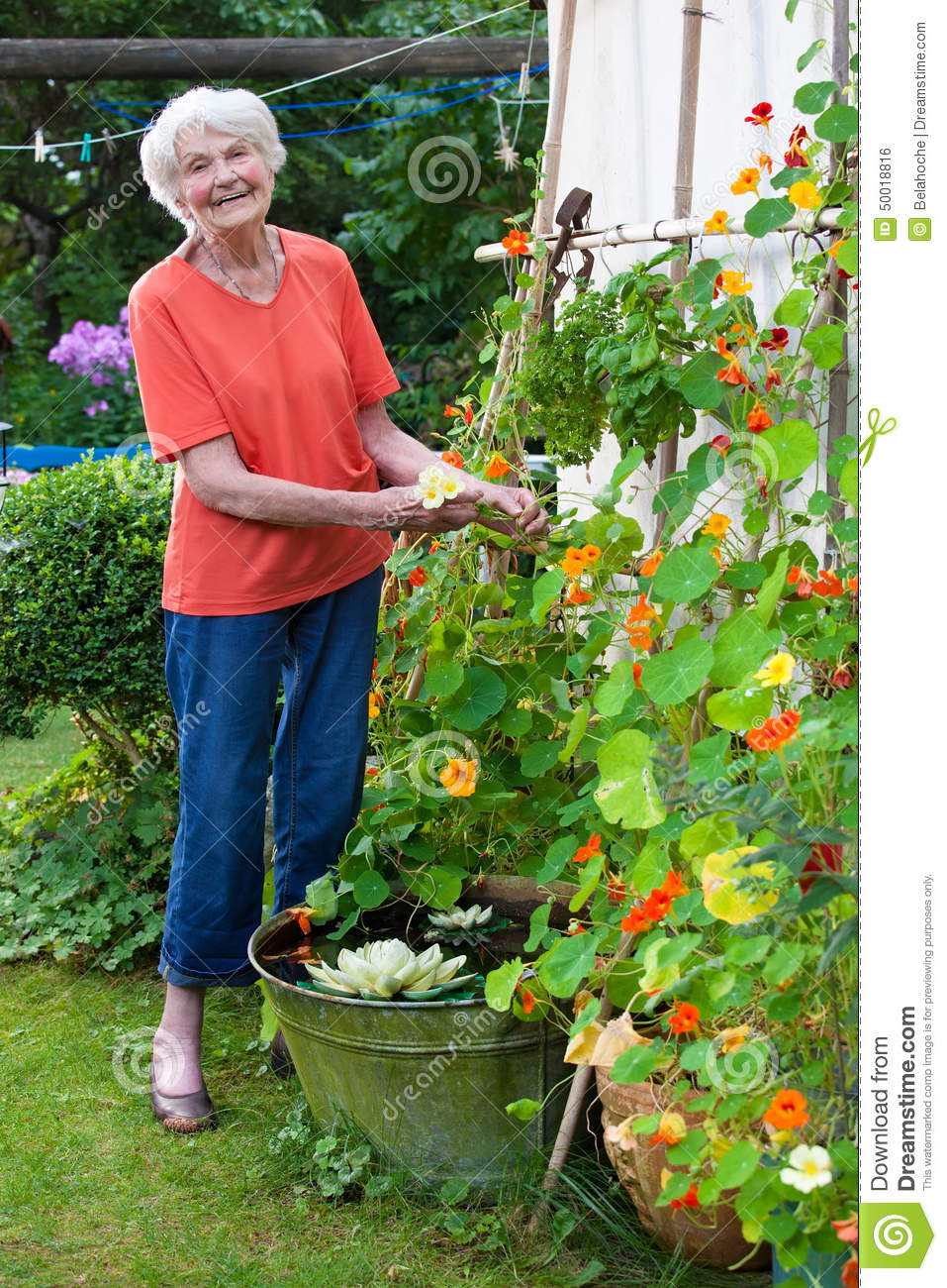 Full Garden In Backyard: Happy Old Woman Taking Care Her Flower Garden Stock Photo