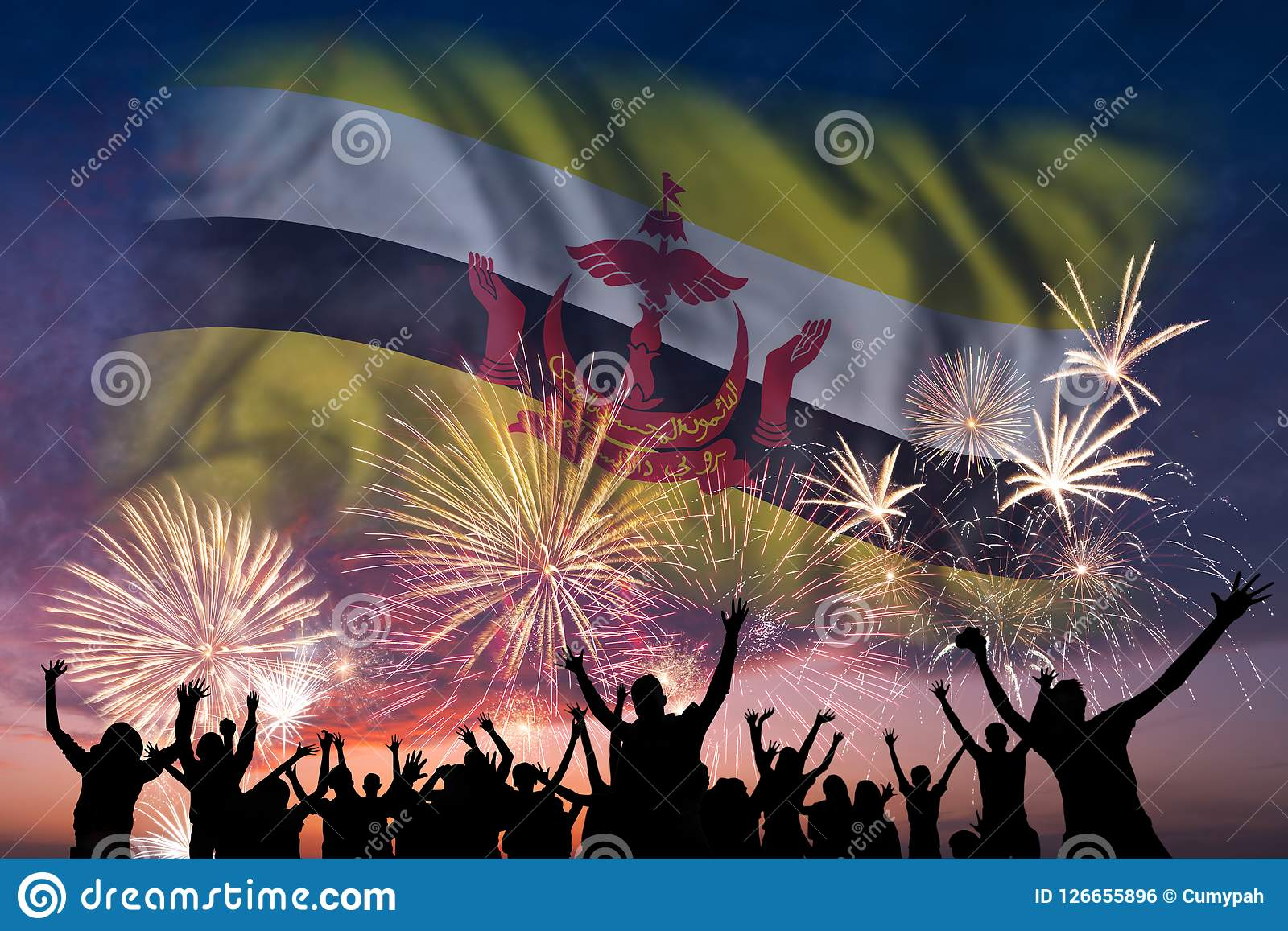 People are looking on fireworks and flag of Brunei. Happy people are looking holiday fireworks with flag of Brunei in sky, independence day Royalty Free Illustration