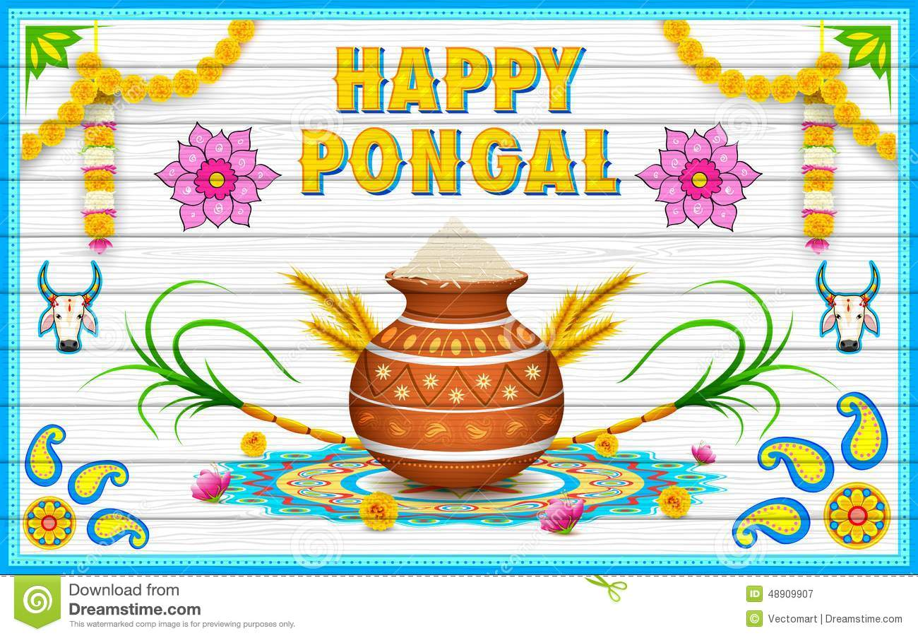 Happy Pongal Greeting Background Cartoon Vector Cartoondealer